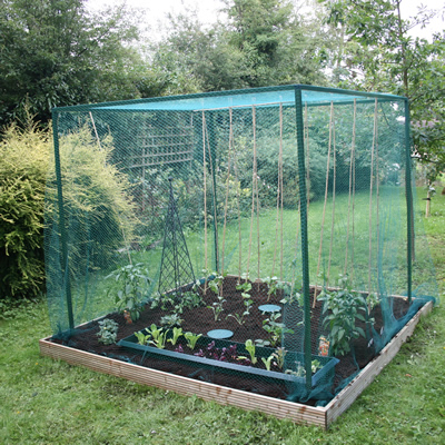 Raised Bed Cages